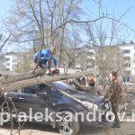 Кронировка и спил деревьев Александров